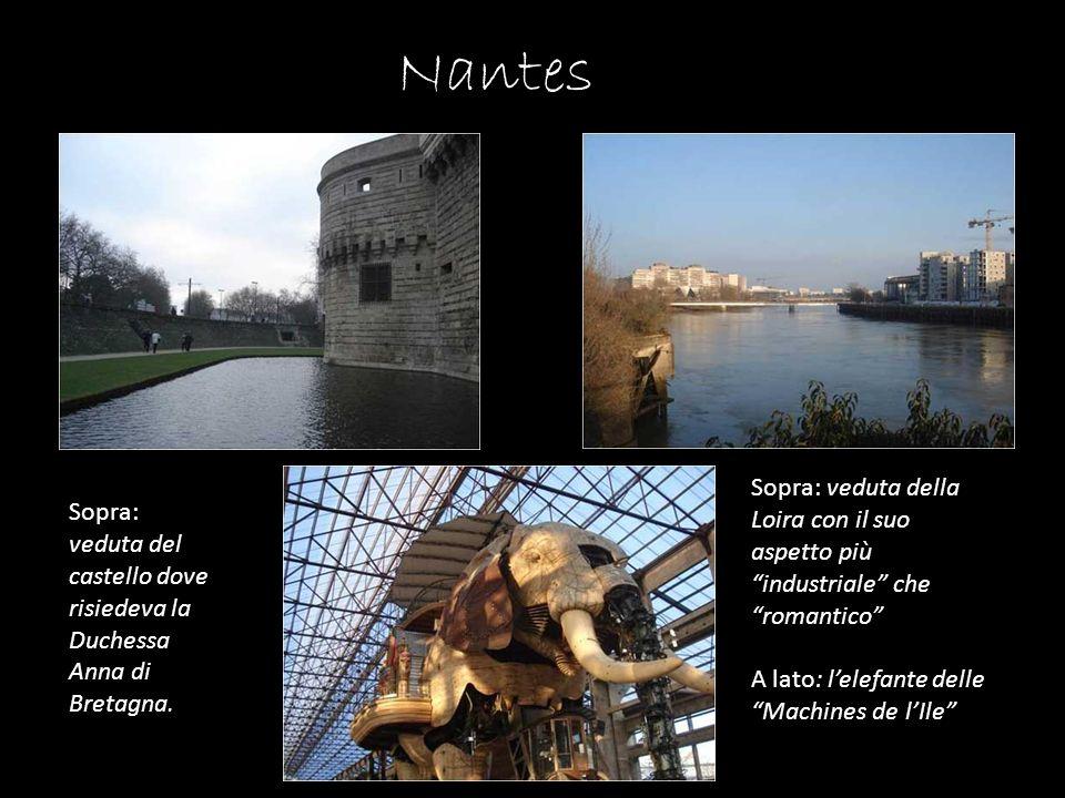 Nantes Sopra: veduta della Loira con il suo aspetto più industriale che romantico A lato: lelefante delle Machines de lIle Sopra: veduta del castello