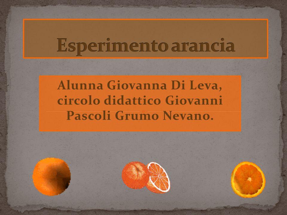 Alunna Giovanna Di Leva, circolo didattico Giovanni Pascoli Grumo Nevano.