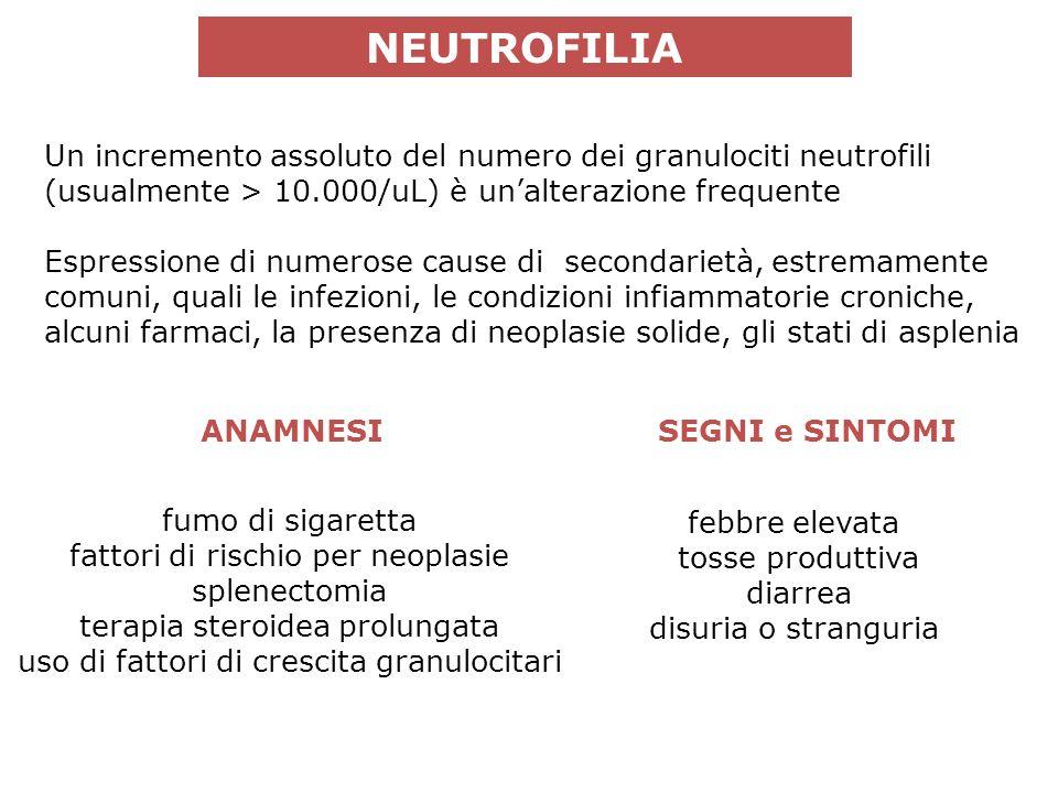 Espressione di numerose cause di secondarietà, estremamente comuni, quali le infezioni, le condizioni infiammatorie croniche, alcuni farmaci, la presenza di neoplasie solide, gli stati di asplenia NEUTROFILIA Un incremento assoluto del numero dei granulociti neutrofili (usualmente > 10.000/uL) è unalterazione frequente ANAMNESISEGNI e SINTOMI febbre elevata tosse produttiva diarrea disuria o stranguria fumo di sigaretta fattori di rischio per neoplasie splenectomia terapia steroidea prolungata uso di fattori di crescita granulocitari