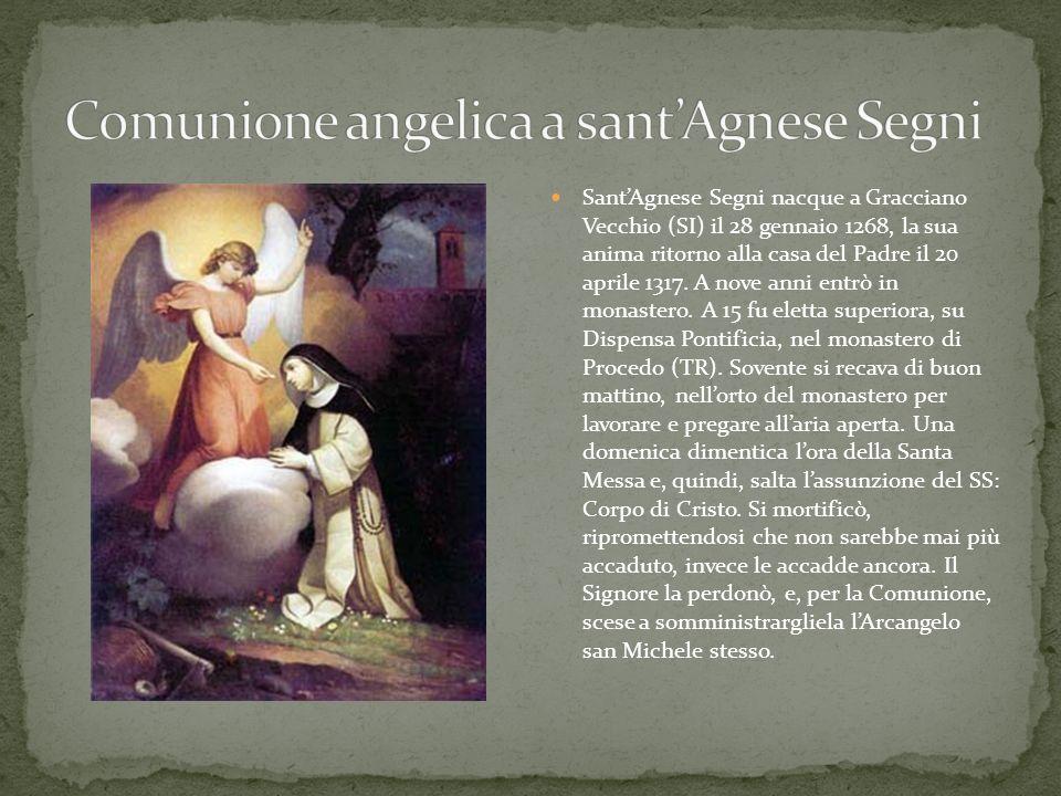 SantAgnese Segni nacque a Gracciano Vecchio (SI) il 28 gennaio 1268, la sua anima ritorno alla casa del Padre il 20 aprile 1317. A nove anni entrò in