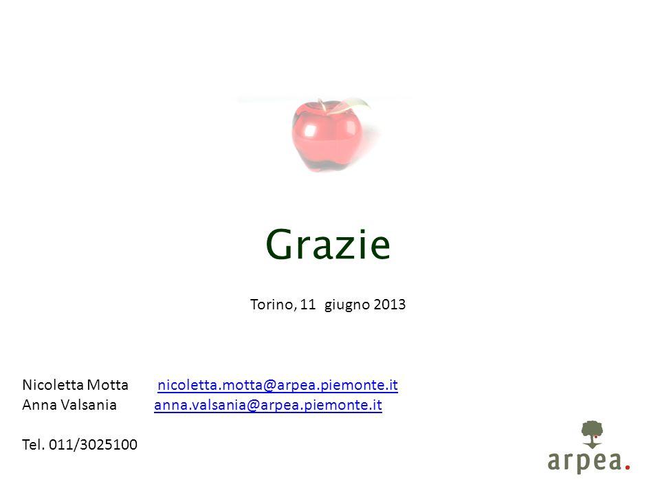 Grazie Torino, 11 giugno 2013 Nicoletta Motta nicoletta.motta@arpea.piemonte.itnicoletta.motta@arpea.piemonte.it Anna Valsania anna.valsania@arpea.piemonte.itanna.valsania@arpea.piemonte.it Tel.