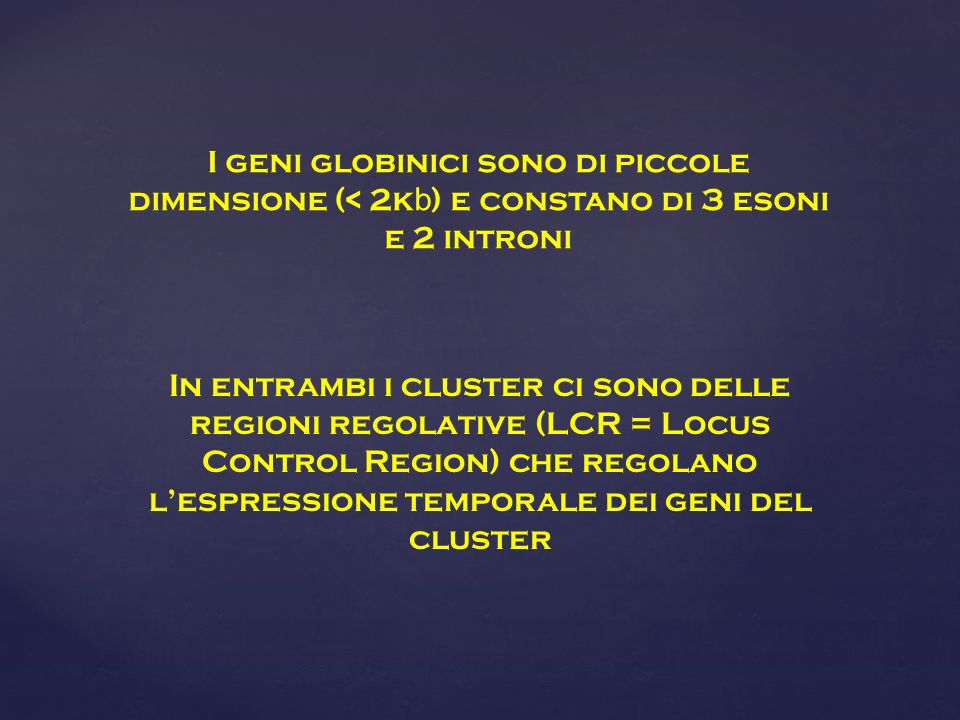 In entrambi i cluster ci sono delle regioni regolative (LCR = Locus Control Region) che regolano lespressione temporale dei geni del cluster I geni gl