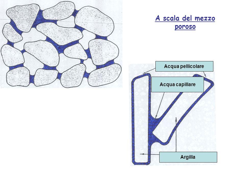 Acqua pellicolare Acqua capillare Argilla A scala del mezzo poroso