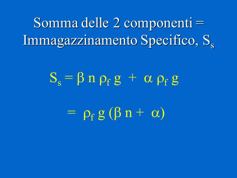 Somma delle 2 componenti = Immagazzinamento Specifico, S s S s = n f g + f g = f g ( n +