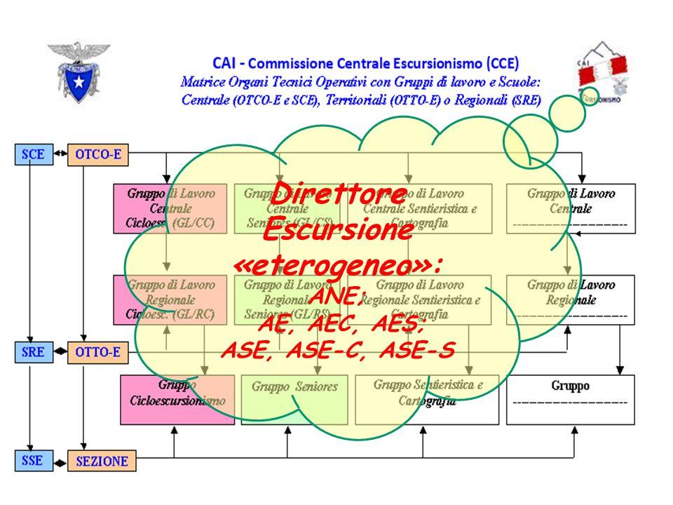 Direttore Escursione «eterogeneo»: ANE; AE, AEC, AES; ASE, ASE-C, ASE-S