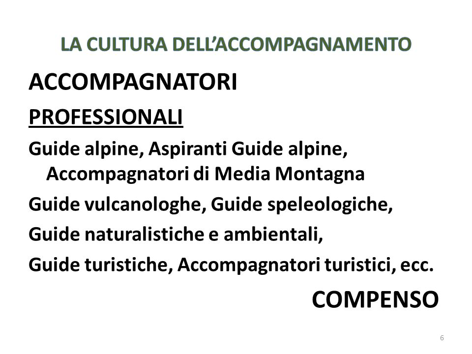 6 ACCOMPAGNATORI PROFESSIONALI Guide alpine, Aspiranti Guide alpine, Accompagnatori di Media Montagna Guide vulcanologhe, Guide speleologiche, Guide n