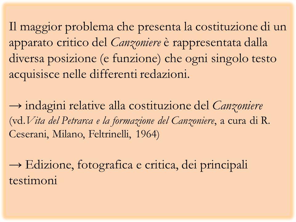 Il maggior problema che presenta la costituzione di un apparato critico del Canzoniere è rappresentata dalla diversa posizione (e funzione) che ogni s