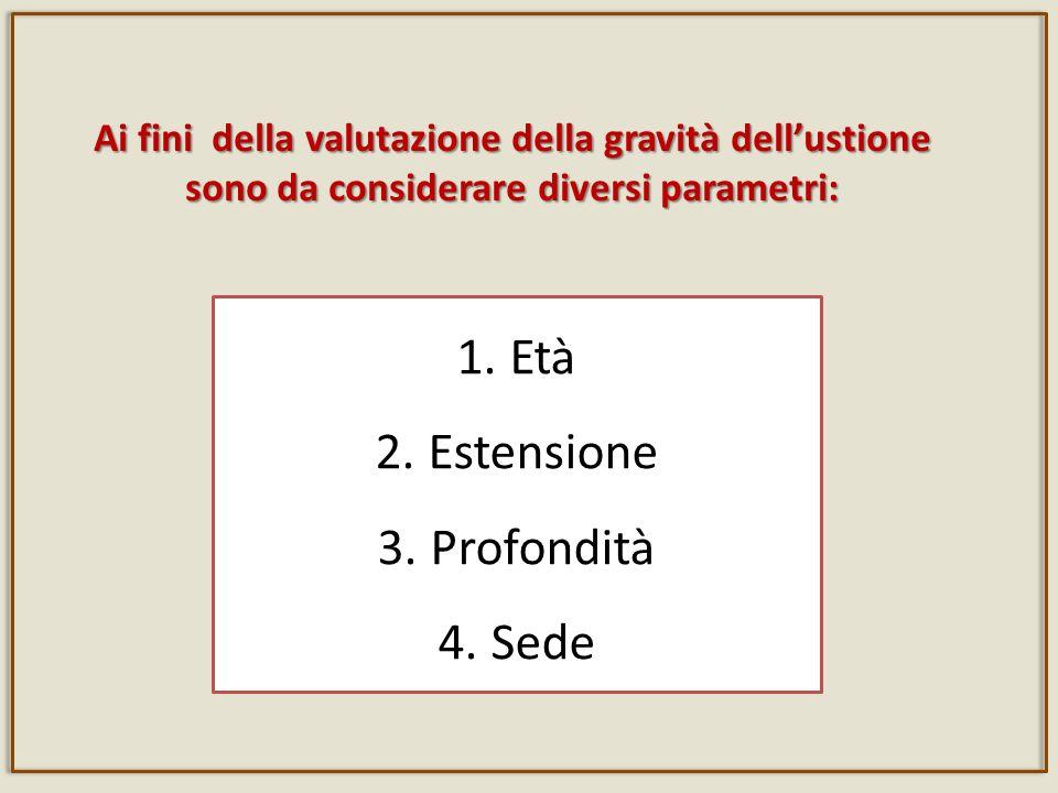 Ai fini della valutazione della gravità dellustione sono da considerare diversi parametri: 1.
