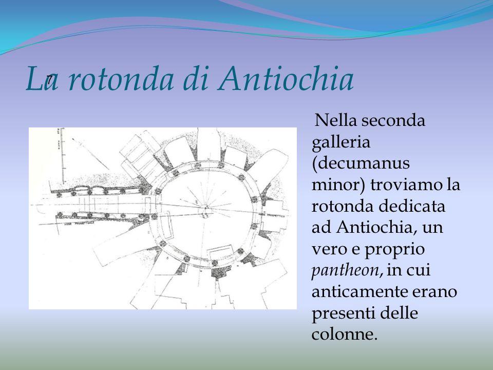 La rotonda di Antiochia Nella seconda galleria (decumanus minor) troviamo la rotonda dedicata ad Antiochia, un vero e proprio pantheon, in cui anticam