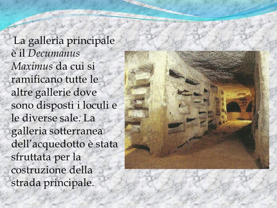 La galleria principale è il Decumanus Maximus da cui si ramificano tutte le altre gallerie dove sono disposti i loculi e le diverse sale. La galleria