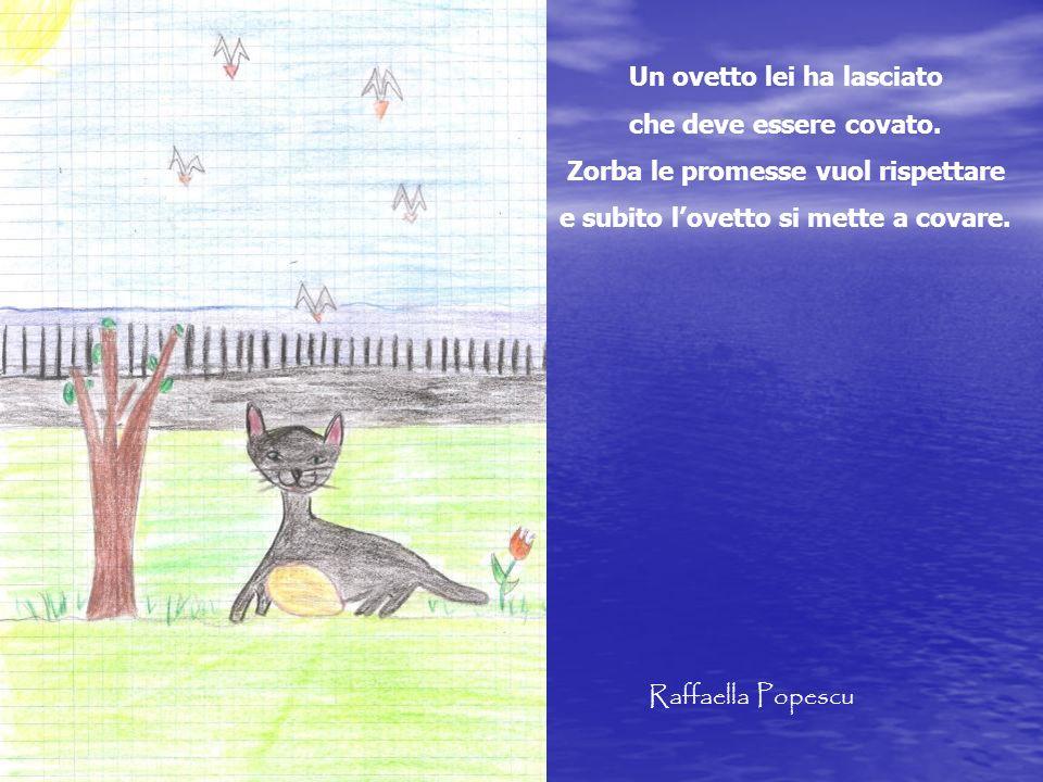 Un ovetto lei ha lasciato che deve essere covato. Zorba le promesse vuol rispettare e subito lovetto si mette a covare. Raffaella Popescu