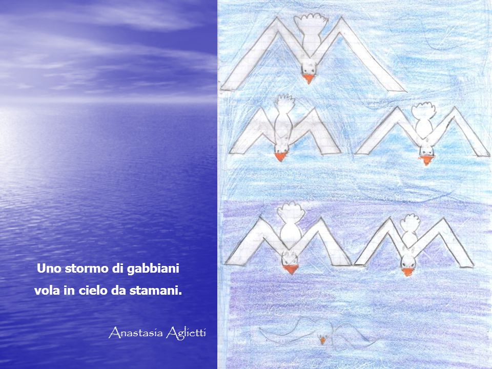 Uno stormo di gabbiani vola in cielo da stamani. Anastasia Aglietti