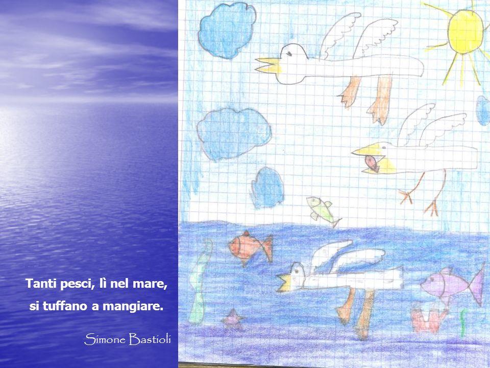 Tanti pesci, lì nel mare, si tuffano a mangiare. Simone Bastioli