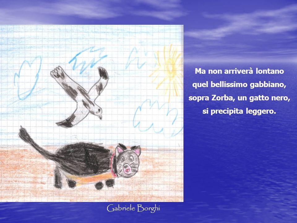 Ma non arriverà lontano quel bellissimo gabbiano, sopra Zorba, un gatto nero, si precipita leggero. Gabriele Borghi