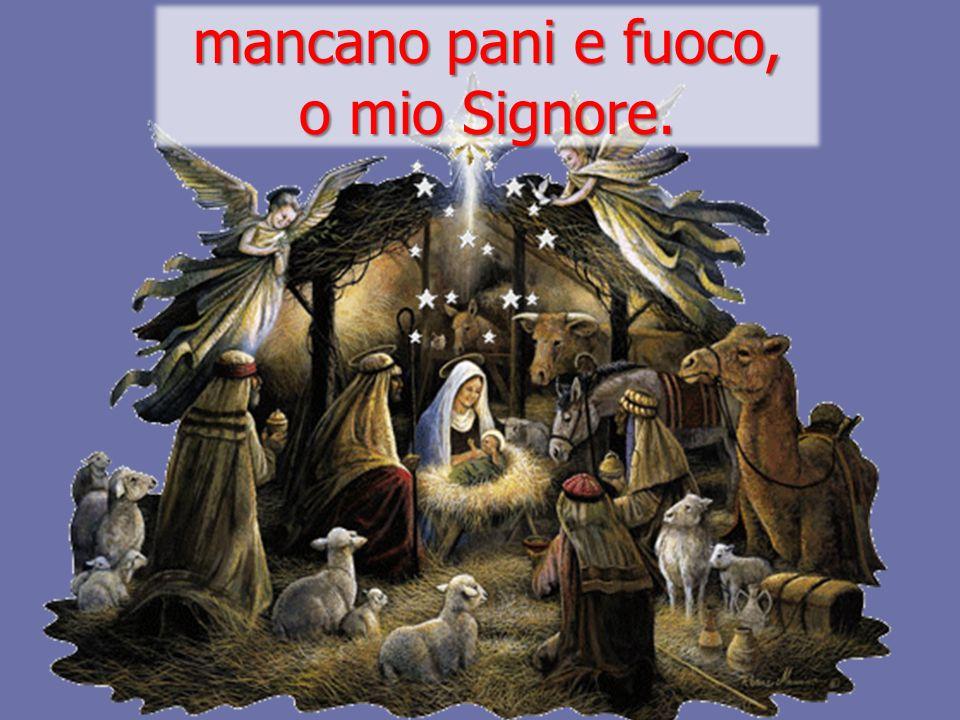 Nasce per noi Cristo Salvatore. Venite adoriamo, venite adoriamo, venite adoriamo il Signore Gesù.