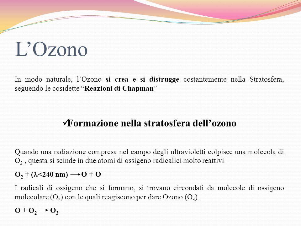 LOzono è una molecola relativamente instabile e può essere distrutta dallazione di radiazioni che cadono nella banda dellultravioletto O 3 + ( =240-320 nm) O 2 + O + Q Unaltra reazione che porta alla distruzione della molecola è la seguente O + O 3 O 2 + O 2 Il ciclo di creazione e distruzione avviene continuamente.