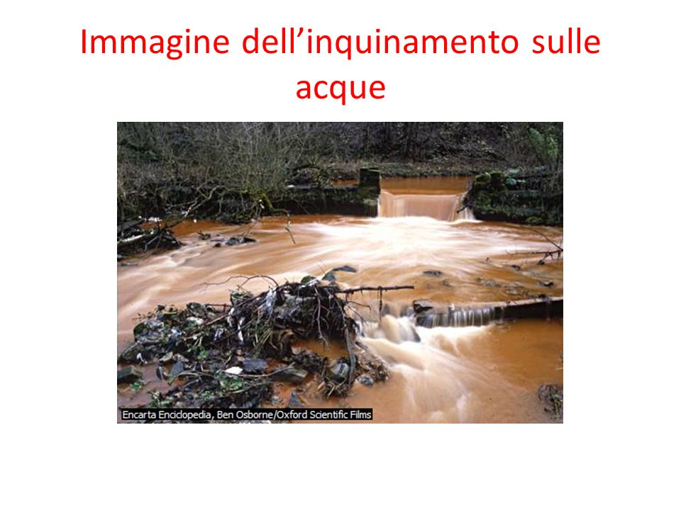 Immagine dellinquinamento sulle acque