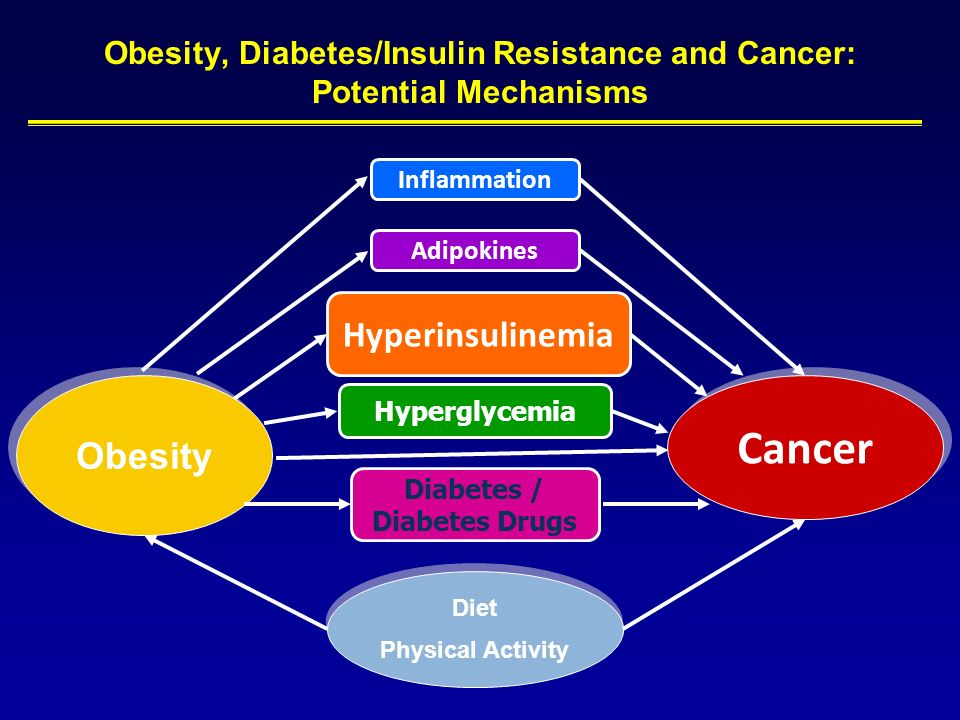 Cancer Obesity Hyperglycemia Hyperinsulinemia Obesity, Diabetes/Insulin Resistance and Cancer: Potential Mechanisms Diabetes / Diabetes Drugs Inflamma