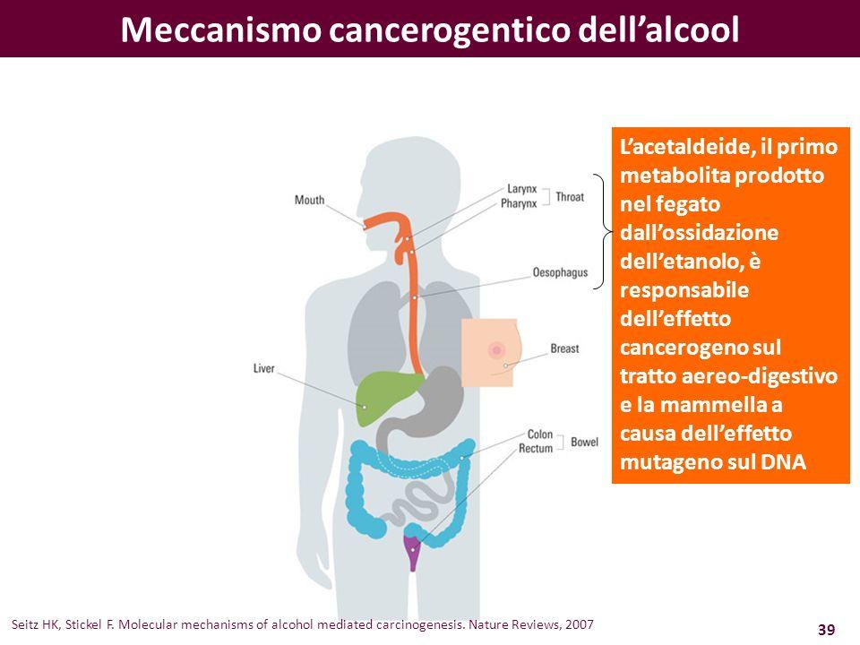 Lacetaldeide, il primo metabolita prodotto nel fegato dallossidazione delletanolo, è responsabile delleffetto cancerogeno sul tratto aereo-digestivo e