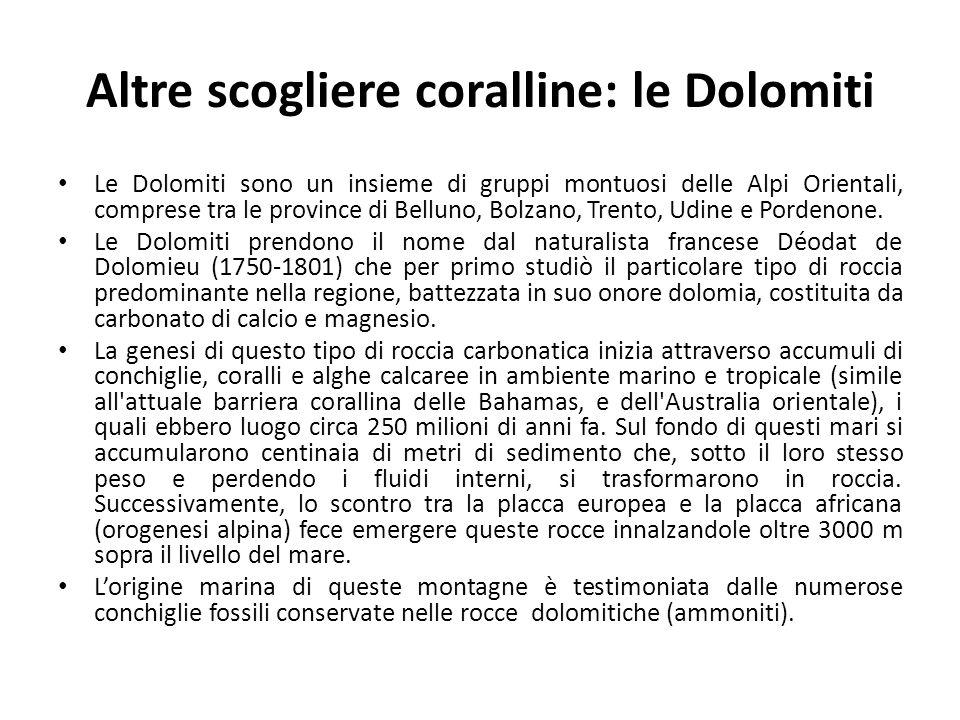 Altre scogliere coralline: le Dolomiti Le Dolomiti sono un insieme di gruppi montuosi delle Alpi Orientali, comprese tra le province di Belluno, Bolza