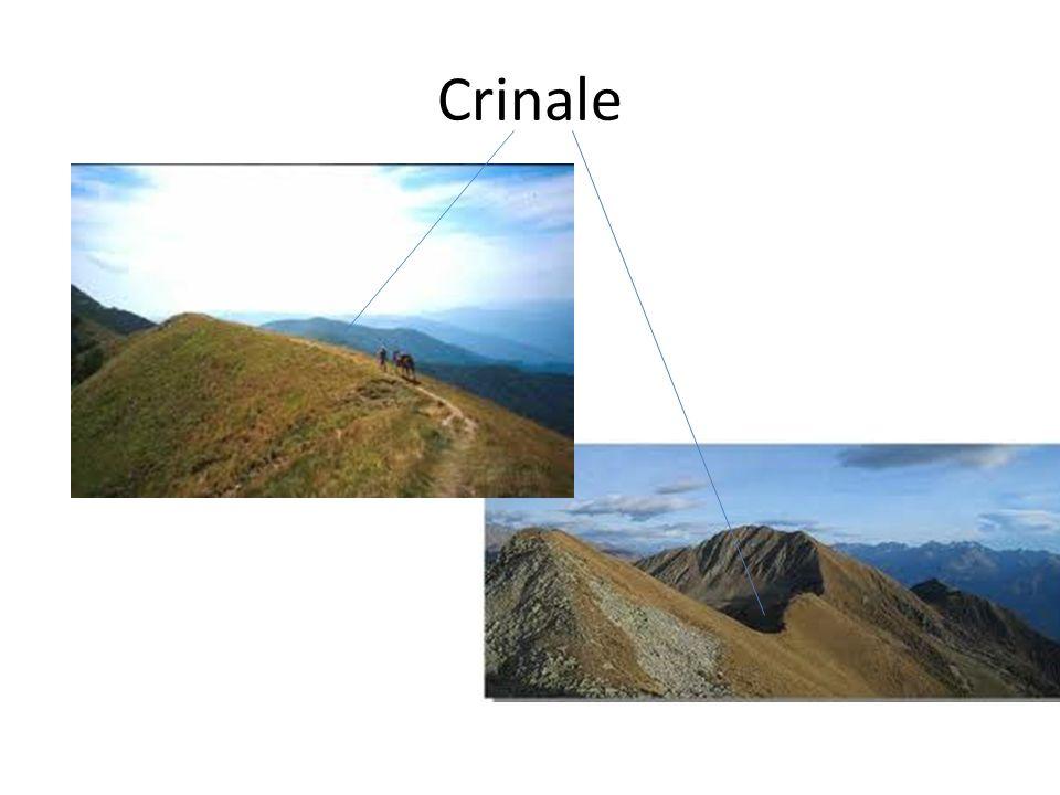 L acqua quindi erode la roccia calcarea e modella il paesaggio: – In superficie si formano depressioni chiamate doline.