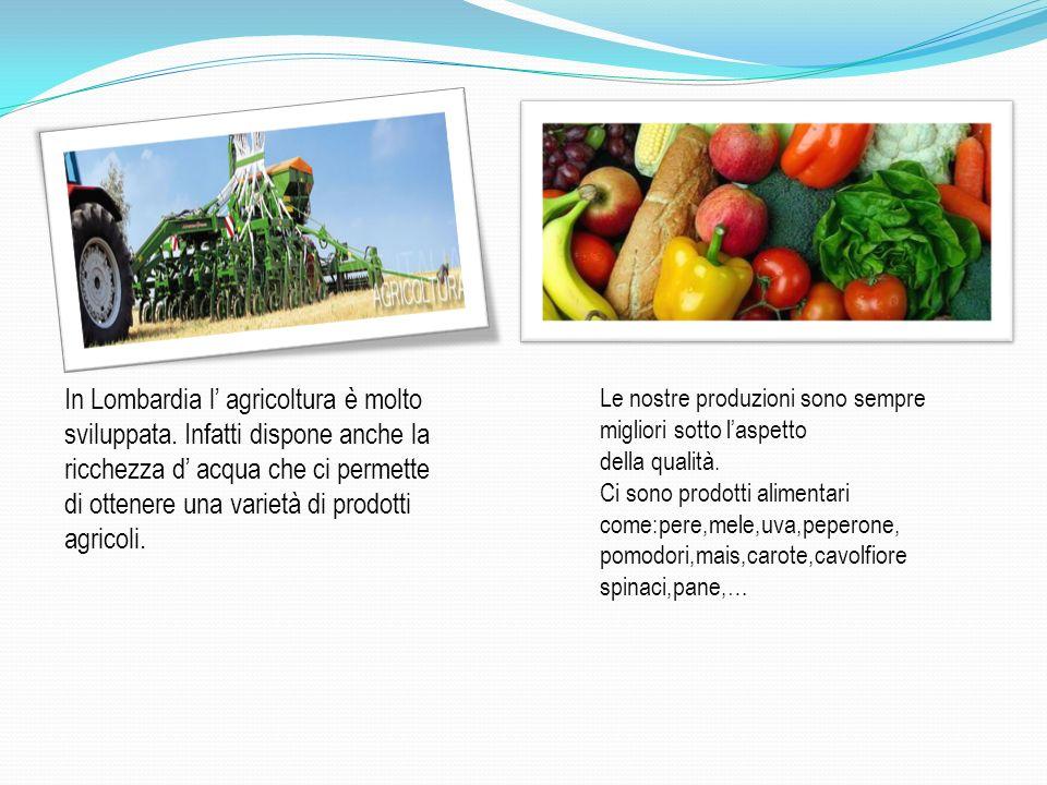 In Lombardia l agricoltura è molto sviluppata. Infatti dispone anche la ricchezza d acqua che ci permette di ottenere una varietà di prodotti agricoli