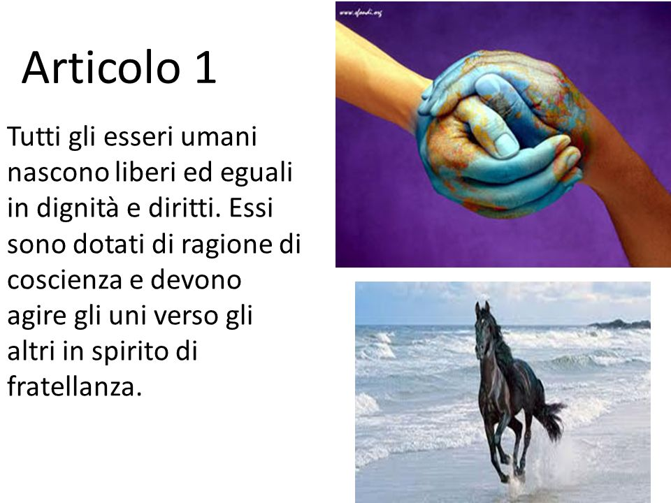 Diritti Umani Articolo 1