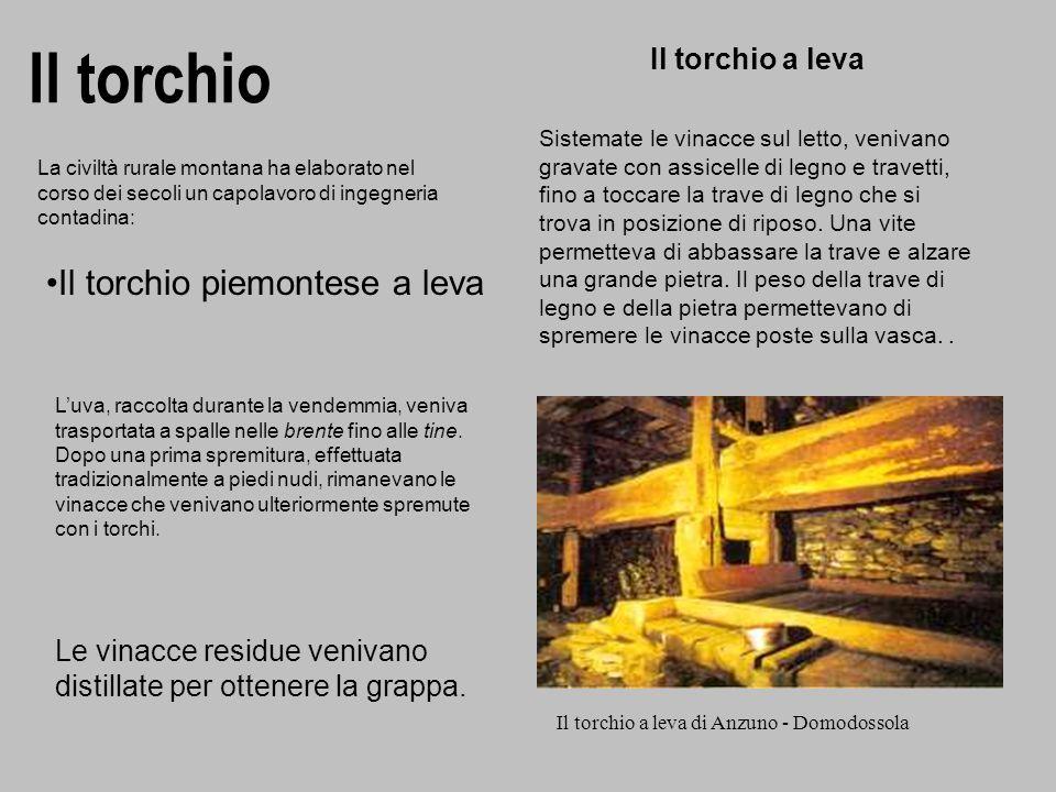 Il torchio Il torchio a leva di Anzuno - Domodossola Il torchio a leva Sistemate le vinacce sul letto, venivano gravate con assicelle di legno e trave