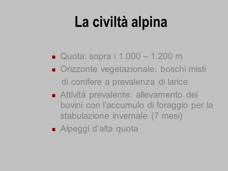La civiltà alpina Quota: sopra i 1.000 – 1.200 m Orizzonte vegetazionale: boschi misti di conifere a prevalenza di larice Attività prevalente: allevam