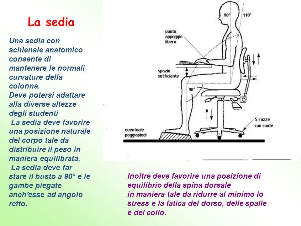 Inoltre deve favorire una posizione di equilibrio della spina dorsale in maniera tale da ridurre al minimo lo stress e la fatica del dorso, delle spal