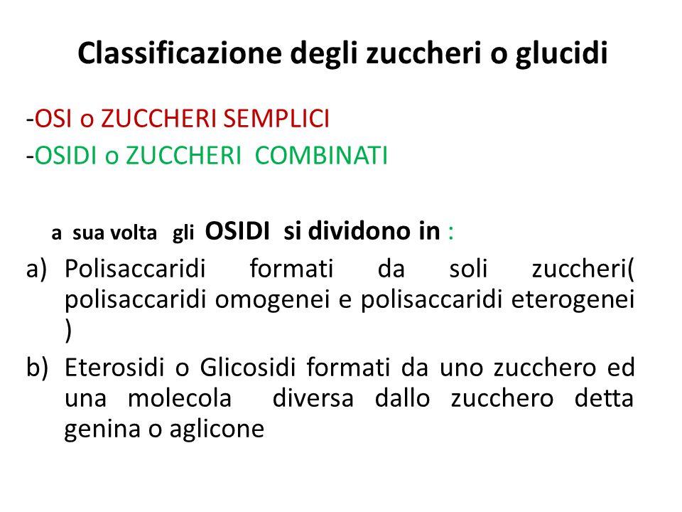 Classificazione degli zuccheri o glucidi -OSI o ZUCCHERI SEMPLICI -OSIDI o ZUCCHERI COMBINATI a sua volta gli OSIDI si dividono in : a)Polisaccaridi f