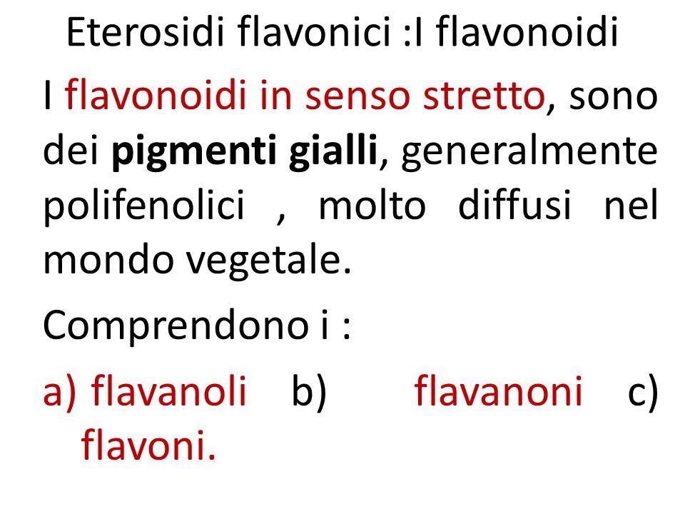 Eterosidi flavonici :I flavonoidi I flavonoidi in senso stretto, sono dei pigmenti gialli, generalmente polifenolici, molto diffusi nel mondo vegetale