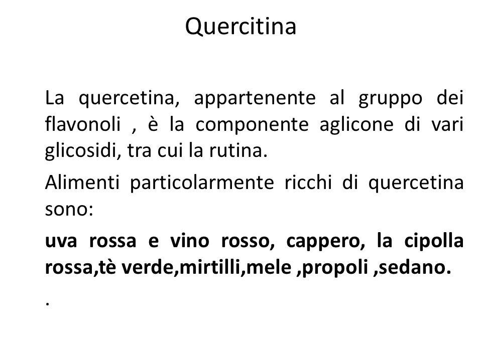 Quercitina La quercetina, appartenente al gruppo dei flavonoli, è la componente aglicone di vari glicosidi, tra cui la rutina. Alimenti particolarment