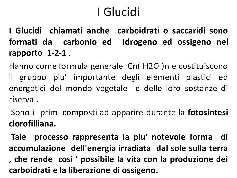 I Glucidi I Glucidi chiamati anche carboidrati o saccaridi sono formati da carbonio ed idrogeno ed ossigeno nel rapporto 1-2-1. Hanno come formula gen