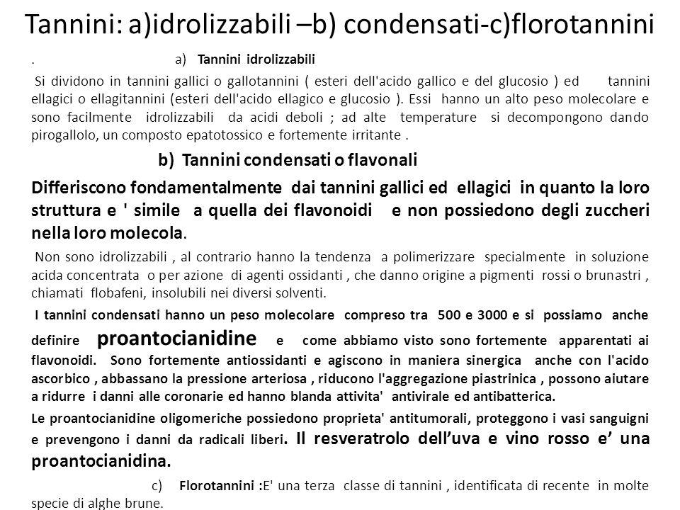Tannini: a)idrolizzabili –b) condensati-c)florotannini. a) Tannini idrolizzabili Si dividono in tannini gallici o gallotannini ( esteri dell'acido gal