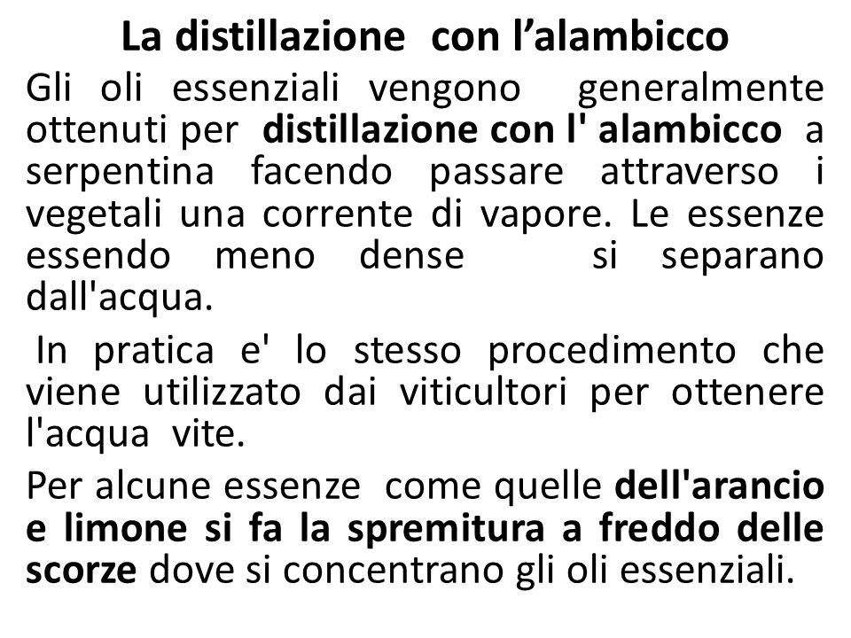 La distillazione con lalambicco Gli oli essenziali vengono generalmente ottenuti per distillazione con l' alambicco a serpentina facendo passare attra
