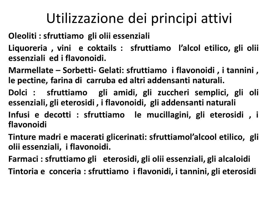 Utilizzazione dei principi attivi Oleoliti : sfruttiamo gli olii essenziali Liquoreria, vini e coktails : sfruttiamo lalcol etilico, gli olii essenzia