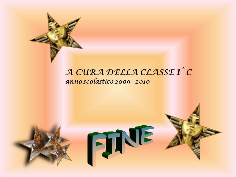 A CURA DELLA CLASSE 1° C anno scolastico 2009 - 2010