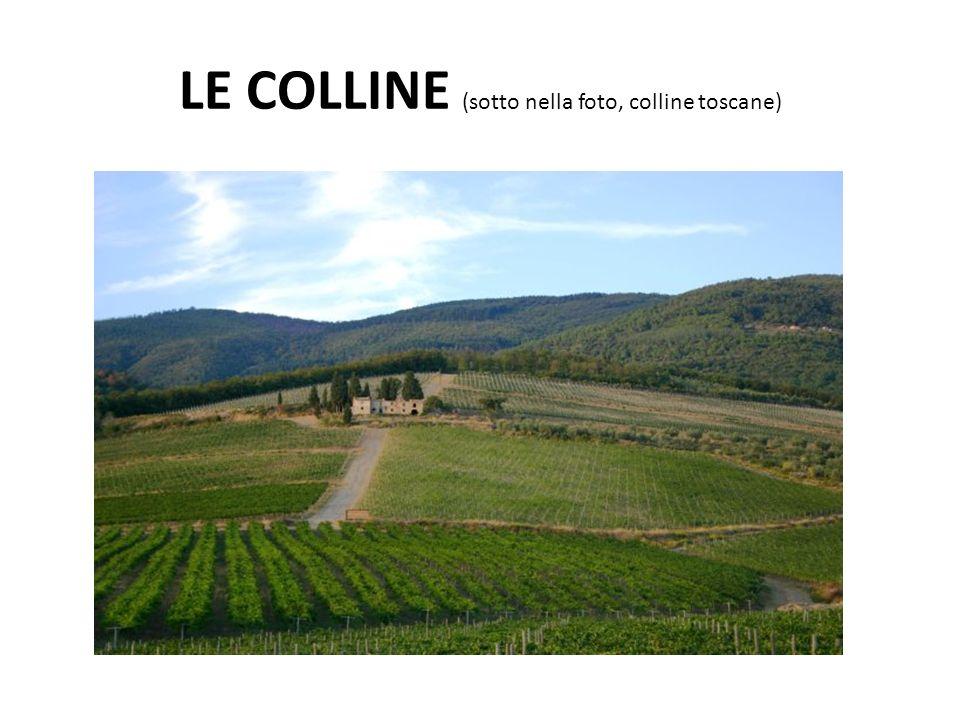 LE COLLINE (sotto nella foto, colline toscane)
