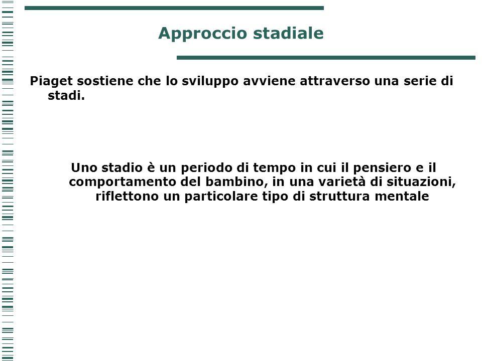 Approccio stadiale Piaget sostiene che lo sviluppo avviene attraverso una serie di stadi. Uno stadio è un periodo di tempo in cui il pensiero e il com
