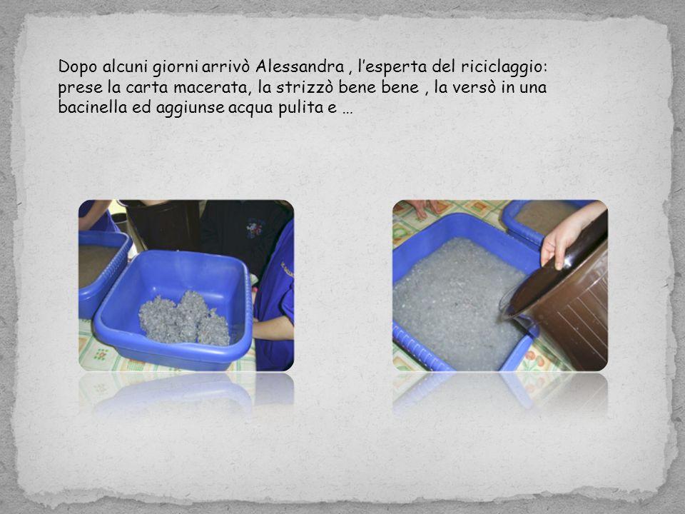 Dopo alcuni giorni arrivò Alessandra, lesperta del riciclaggio: prese la carta macerata, la strizzò bene bene, la versò in una bacinella ed aggiunse acqua pulita e …