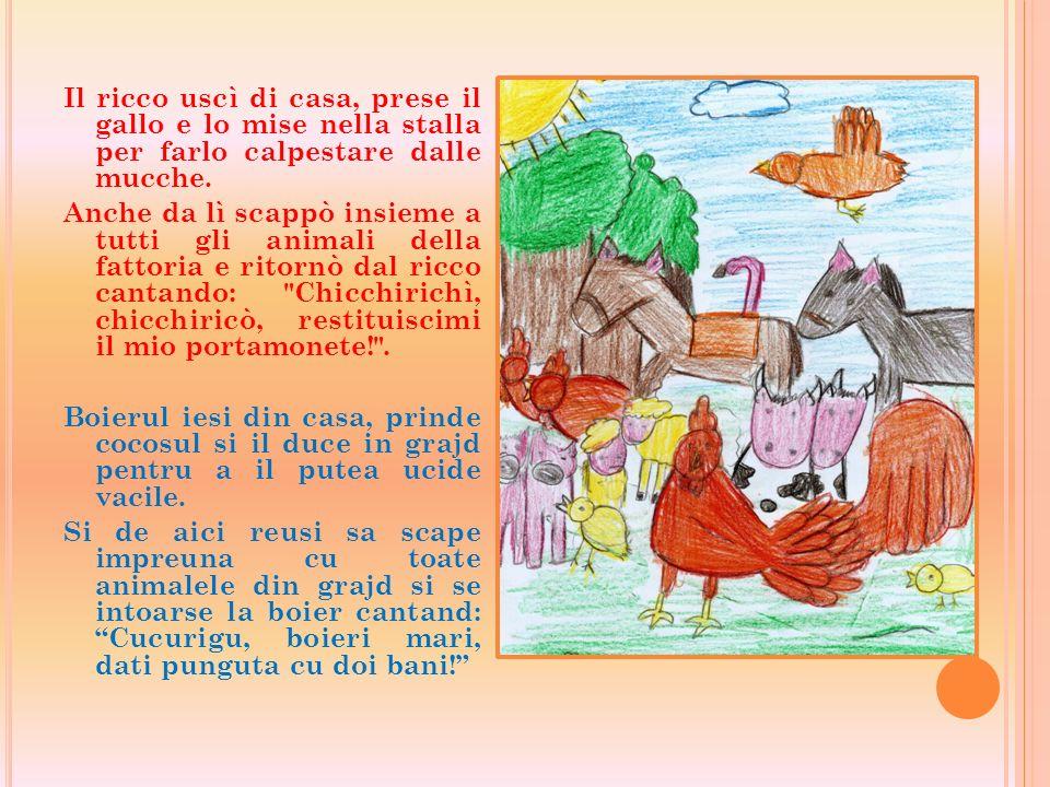 Il ricco uscì di casa, prese il gallo e lo mise nella stalla per farlo calpestare dalle mucche. Anche da lì scappò insieme a tutti gli animali della f
