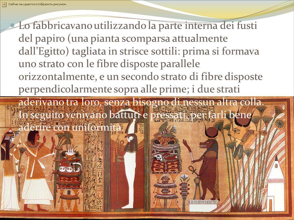 Lo fabbricavano utilizzando la parte interna dei fusti del papiro (una pianta scomparsa attualmente dallEgitto) tagliata in strisce sottili: prima si