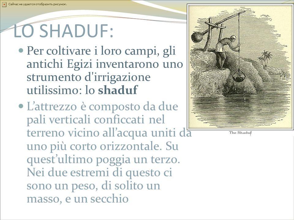 LO SHADUF: Per coltivare i loro campi, gli antichi Egizi inventarono uno strumento d'irrigazione utilissimo: lo shaduf Lattrezzo è composto da due pal