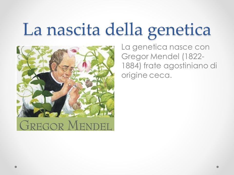 La mescolanza dei caratteri Prima di Mendel si pensava che le caratteristiche di un figlio derivassero dalla mescolanza dei caratteri dei genitori.