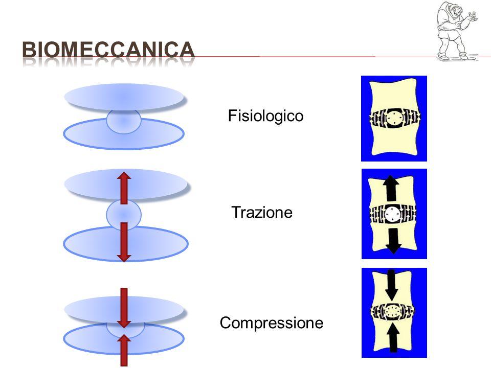 Fisiologico Trazione Compressione