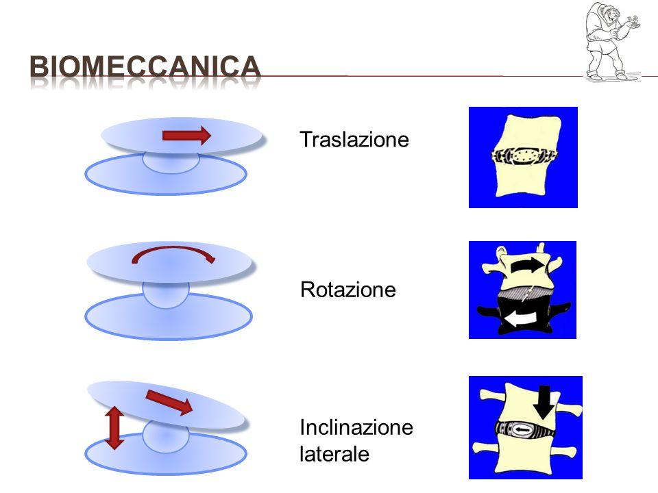Esame di prima istanza per lo studio della scoliosi Generalmente in 2 proiezioni (AP + LL) quando eseguito per la prima volta; nella sola proiezione frontale nei controlli successivi Deve essere essere visualizzata tutta la colonna dalla I vertebra cervicale al sacro-coccige Le immagini vengono visualizzate su una griglia quadrettata ottenuta da appositi complessi cassetta/schermo (radiologia analogica) o software (radiologia digitale)