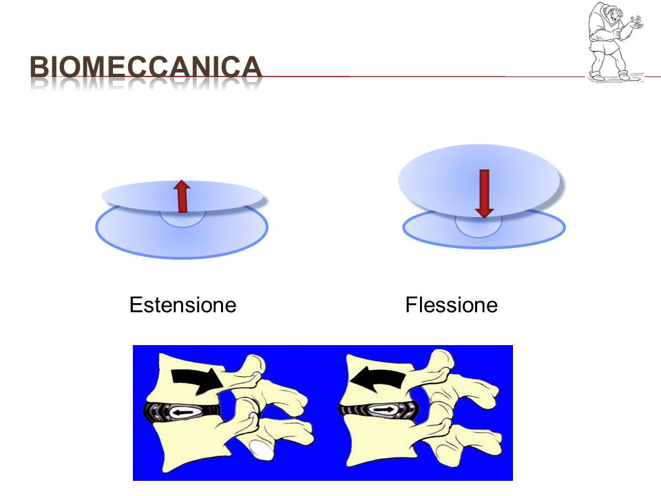 tutta la meccanica della colonna è sfavorevole LA FLESSIONE provoca movimenti di rotazione dei corpi vertebrali LA FLESSIONE LATERALE la rotazione si accresce a causa della compressione discale e dei legamenti Sec MOE la rotazione è più evidente se la flessione si realizza dal lato della concavità