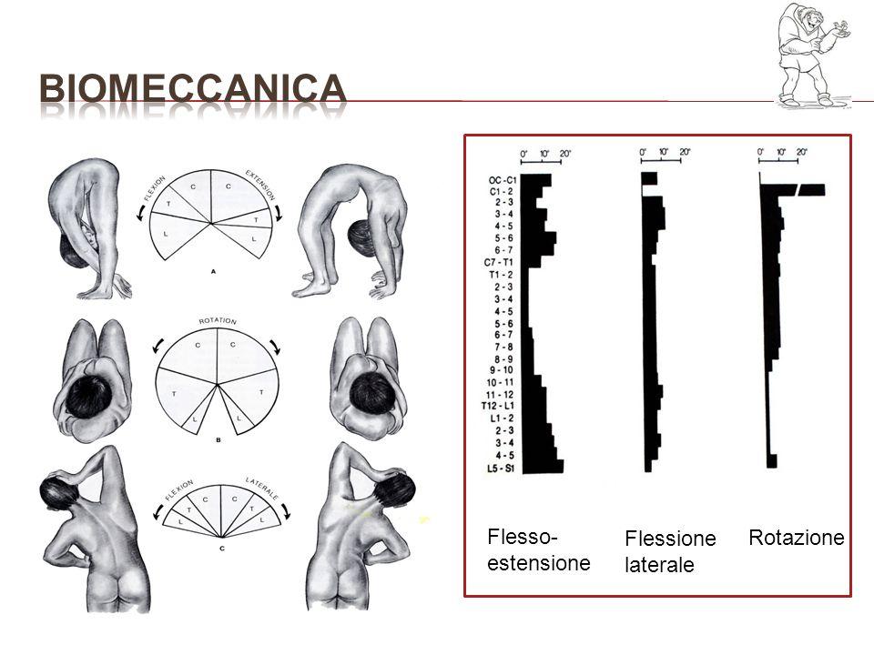 Flesso- estensione Flessione laterale Rotazione