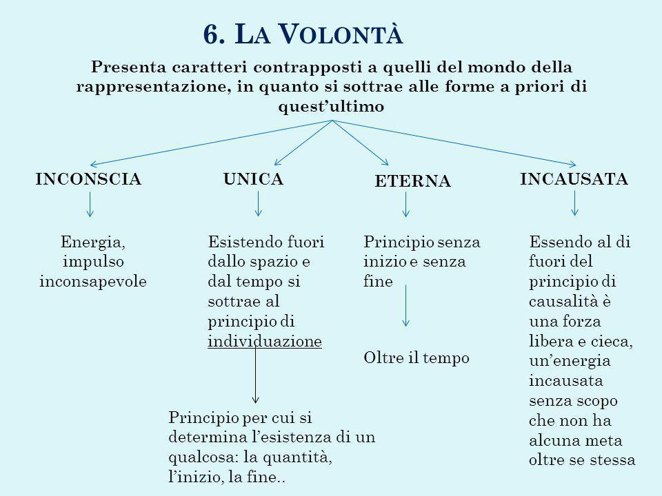 6. L A V OLONTÀ Presenta caratteri contrapposti a quelli del mondo della rappresentazione, in quanto si sottrae alle forme a priori di questultimo INC